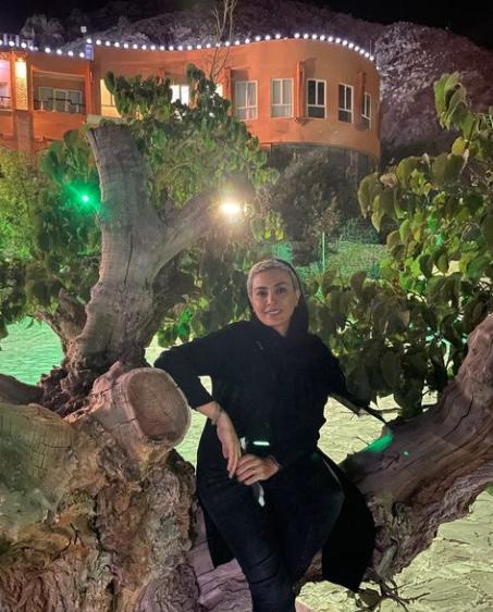 حدیثه تهرانی بر بلندای درختی تنومند /عکس