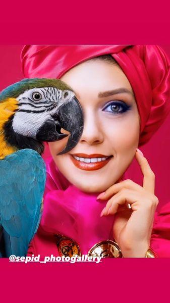 حیوان سخنگوی شهرزاد کمال زاده /عکس