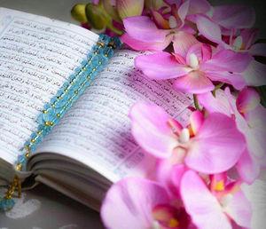 ثمره رنج و سختی، درک نیکی و احسان است