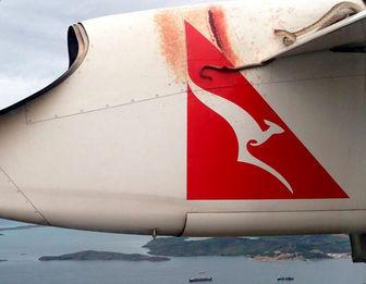 سفر مار پیتون روی بال هواپیما! + فیلم