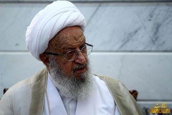 واکنش مکارم شیرازی به همایش انتخاباتی دولت