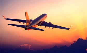 تلاش ناکام یک خلبان برای فرود اضطراری/فیلم