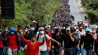 آمار عجیب مهاجران بازداشتی در مرزهای آمریکا