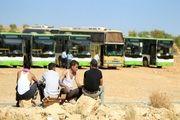آوارگان سوری به خانه های خود باز می گردند