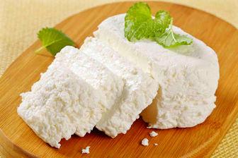قیمت انواع پنیر در میادین میوه و تره بار