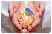 جدید ترین روش های درمان آلزایمر در سالمندان