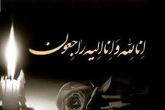 آیتالله سید محمدسعید حکیم، از مراجع چهارگانه نجف درگذشت