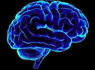 چگونه مغز خود را سالم نگه داریم؟