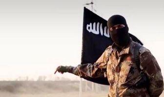 مرد داعشی امنیت در مرزهای آلمان را به تمسخر گرفت+فیلم