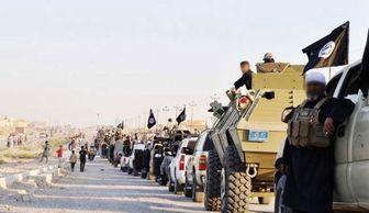۱۶ هزار نفر در یکسال به داعش پیوستهاند
