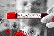 کشف دارویی که از پیشروی ویروس کرونا در بدن جلوگیری میکند