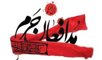 هدیه باارزش همسر مدافع حرم به حضرت زینب (س)/ عکس