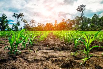 کشاورزان هشدارهای هواشناسی را جدی بگیرند!