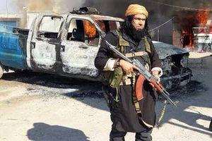 عامل ادامه حیات داعش در سوریه چیست؟
