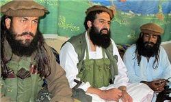 طالبان پاکستان بیعت با داعش را تکذیب کرد