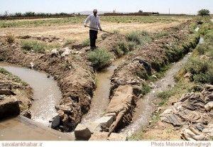 آلودگی منابع آبی بیله سوار از طریق سموم کشاورزی