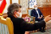 دیدار سفیر ترکیه با  رئیس مجلس/گزارش تصویری