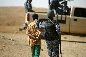 بازداشت ببر داعش+ جزئیات