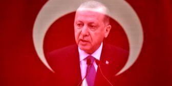 این زن حیثیت اردوغان را برد+ فیلم