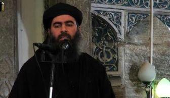پیام کم سابقه خلیفه داعش به هواداران خود