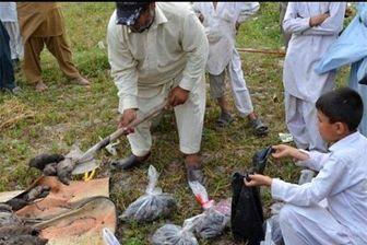 جولان موشها در پارلمان پاکستان