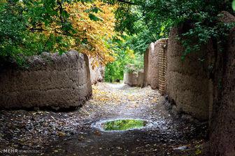 باغات بالای ۵ هزار متر تهران شناسنامهدار شدند