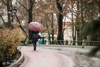 ورود سامانه بارشی جدید به کشور از فردا/تهران بارانی می شود
