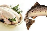 دلیل گرانی و افزایش قیمت مرغ