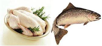 نرخ جدید مرغ و انواع ماهی در بازار
