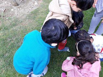 زمان یادگیری نظم و تربیت در کودکان چه سنی است؟