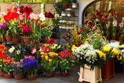 آدرس بهترین گل فروشی های تهران
