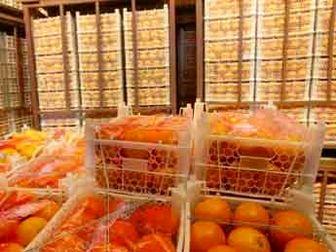 ذخیره ۱۰۰ هزار تن سیب و پرتقال شب عید