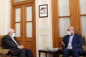 دیدار ظریف و معاونانش با رئیس مجلس+عکس