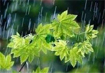 ایران بارانی می شود