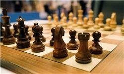 ادامه نتایج درخشان شطرنج ایران در جام جهانى