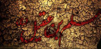 حضرت مسلم بن عقیل(ع) را بهتر بشناسیم /فیلم