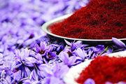 زعفران ارزان شد/ کاهش 2 میلیون تومانی قیمت زعفران