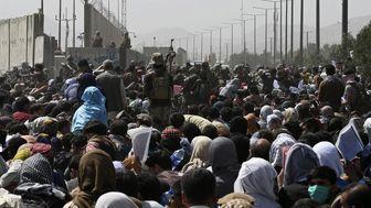 پناهجویان افغان در ایران، مشتاق بازگشت به خانه