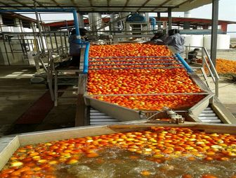 افتتاح ۲کارخانه رب و آب میوه گیری در قلعه گنج