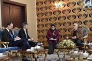 دیدار سفیر سوئیس با وزیر اقتصاد با موضوع FATF