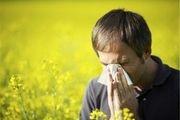 شایعترین  علت حساسیت در فصل بهار