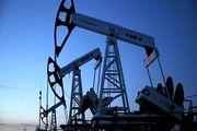 صدور مجوز برای حفاری نفت در منطقه ممنوعه