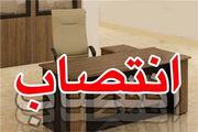 فرید محسنی رئیس دانشگاه علوم قضایی شد