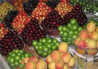کاهش شدید میوههای قاچاق در بازار