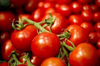 قیمت گوجه فرنگی به ۹ هزار تومان رسید