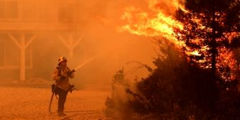 آتش دوباره به جان جنگلهای گلستان افتاد/آمادهباش نیروهای حافظ منابع طبیعی