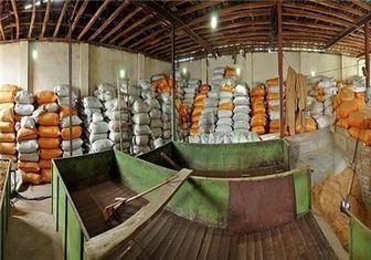 برنج هندی در بازار کم می شود