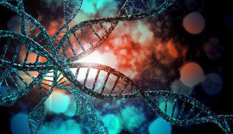 تاثیر ژنتیک بر سلامت بانوان