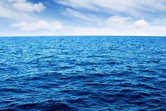 عمق کشف این ماهی رکورد به جا گذاشت +عکس