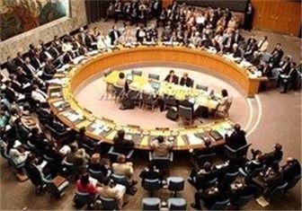 واکنشها به رد عضویت عربستان در شورای امنیت